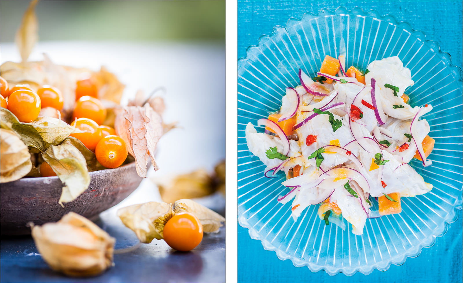 Ceviche - Peruvian Kitchen - Books | Published Work photographer pwf